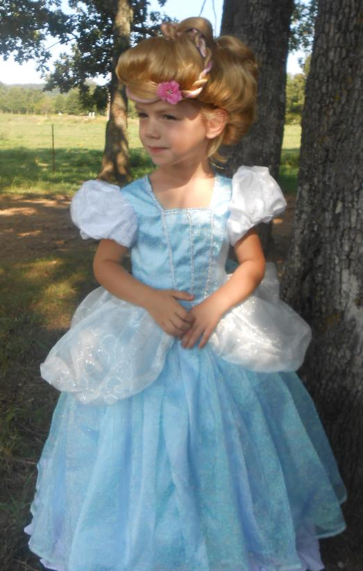 Deluxe Cinderella Costume  sc 1 st  WeHaveCostumes.com : homemade cinderella costume  - Germanpascual.Com